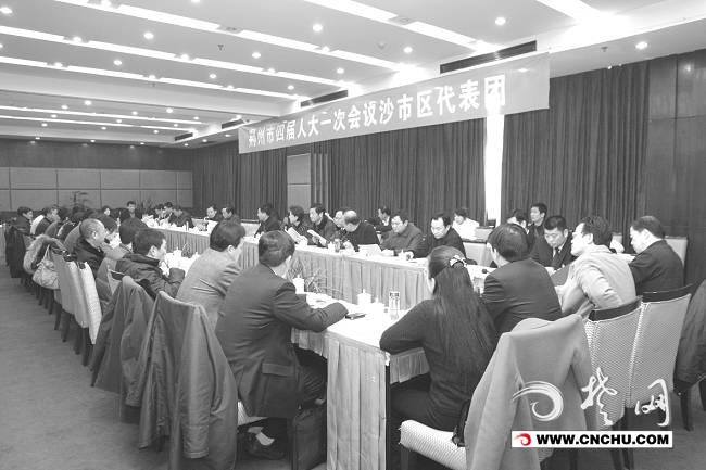 田道锋,李友平,陈明新,杨鹏代表建议,荆州市政府应在交通发展定位