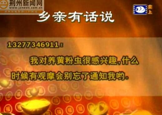 武汉往返南京航班全线停飞