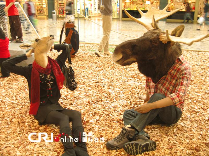 日内瓦大卖场中的动物时装秀(组图)