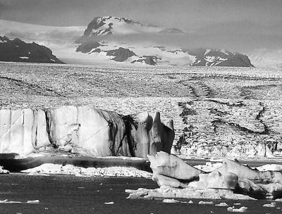 全球变暖致北极海冰密度处于史上最低状态-全