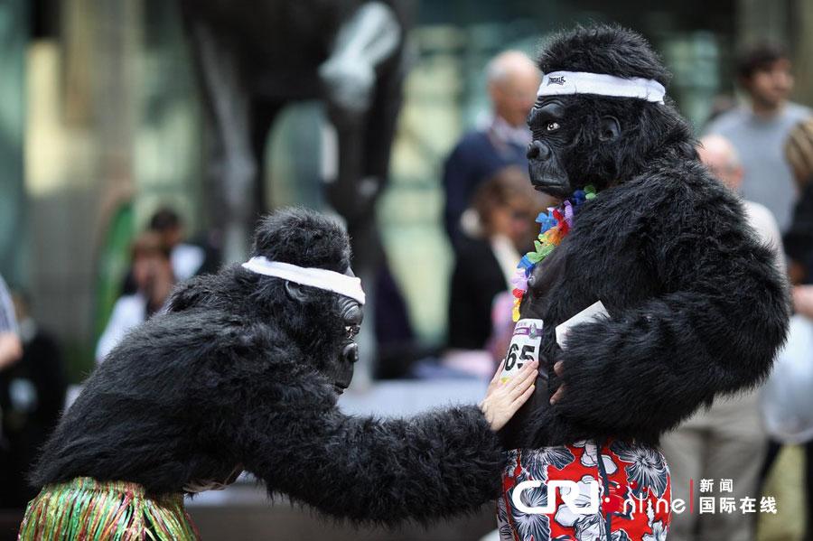 """英国伦敦举行""""大猩猩""""慈善赛跑(高清组图)"""