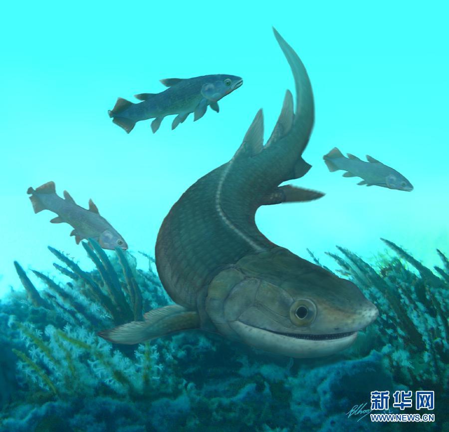 """高清:地球上最古老的基干四足动物化石""""现身""""中国"""