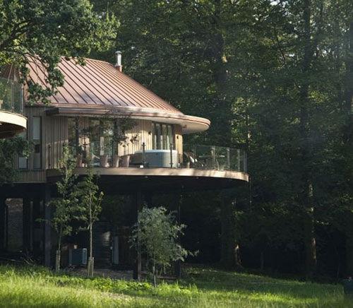 树上酒店:瑞典酒店建世界最大树屋