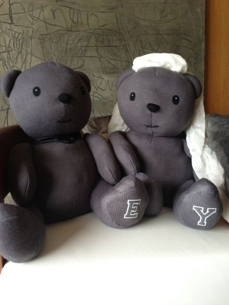 两只可爱的小熊玩偶
