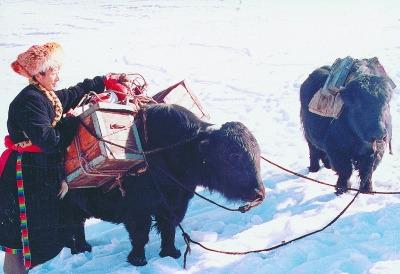 牛驮人中国剪纸