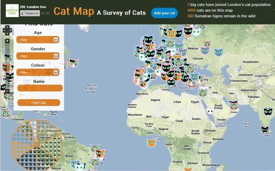"""伦敦动物园推出互动型""""猫咪版世界地图"""""""
