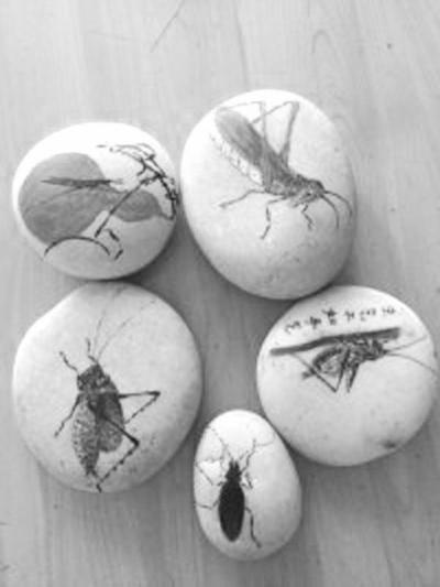 在石头上画画久了,就琢磨出可以运用石头本身的纹理来作画.