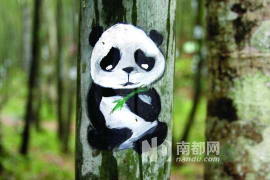 熊猫吃竹子手绘