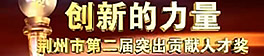 荆州市第二届突出贡献人才奖 颁奖盛典