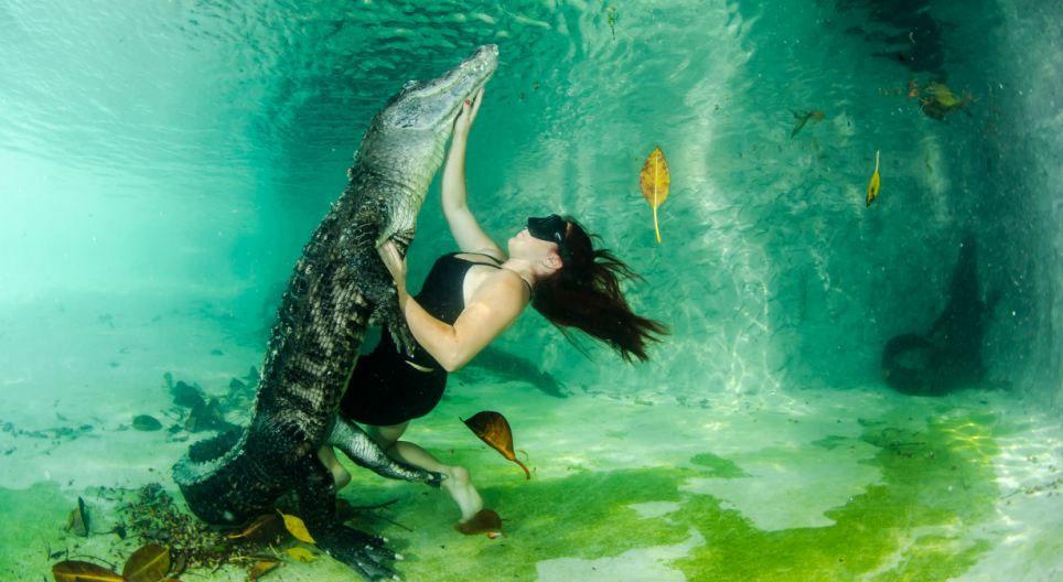 壁纸 动物 海底 海底世界 海洋馆 水族馆 鱼 鱼类 964_528