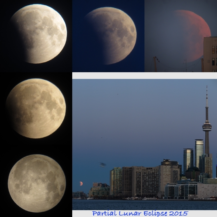2015月全食:全球多地出现红月亮