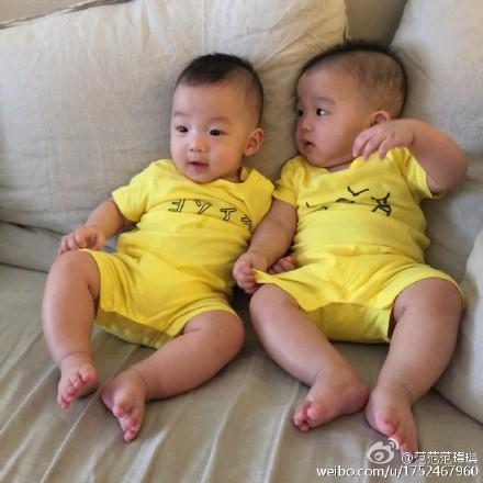 范玮琪清晨晒双胞胎萌照