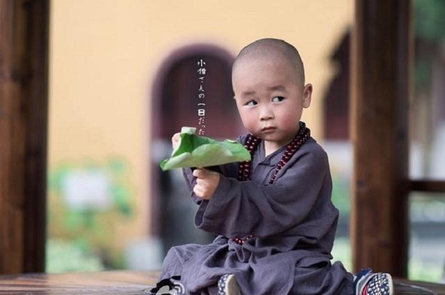 泰国超萌小和尚走红 盘曾萌翻你的小和尚小道姑
