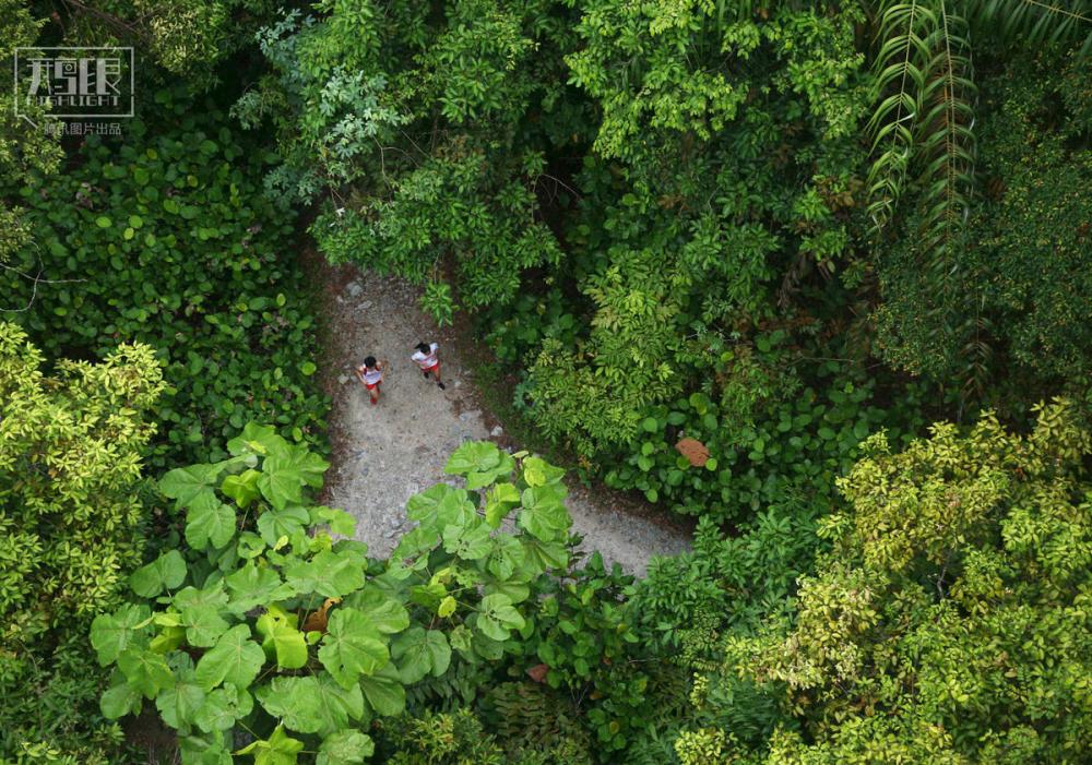 壁纸 风景 森林 桌面 1000_701