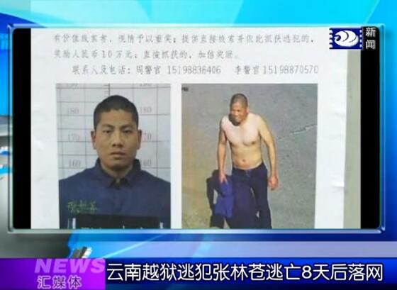 汇媒体:云南越狱逃犯张林苍逃亡8天后落网