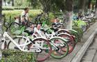 """特约记者行:荆州对共享单车说""""够了"""""""