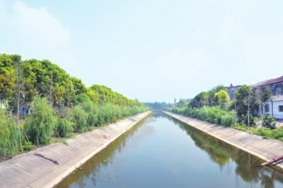 洪湖峰口镇:传统文化滋养美丽乡村 发展日新月