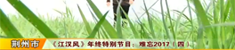 《江汉风》年终特别节目:难忘2017(四)
