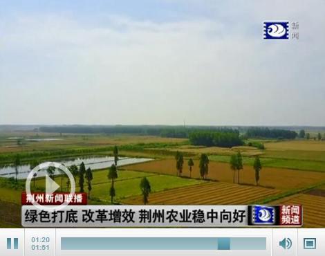 绿色打底 改革增效 荆州农业稳中向好