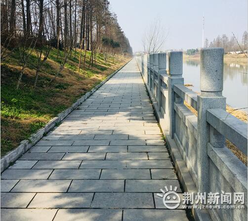 荆州区太湖港沿岸风景美如画 展现人水和谐之美