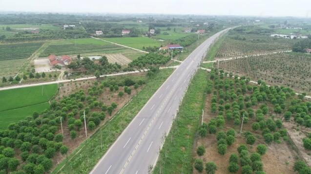 """精心护林 荆州区""""让城市拥抱森林""""梦想渐成现实"""