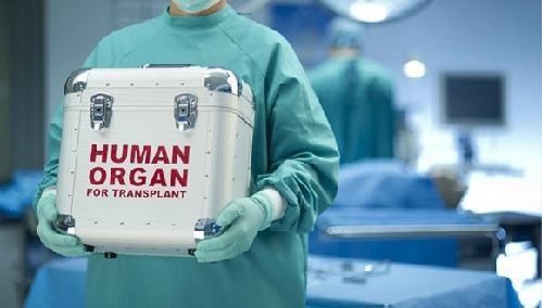 荆州累计完成器官捐献110例 捐献大器官334个