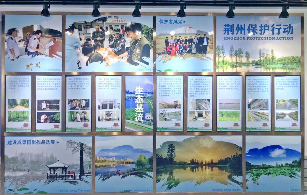 五年呵护见成效 环荆州古城国家湿地公园越来越美
