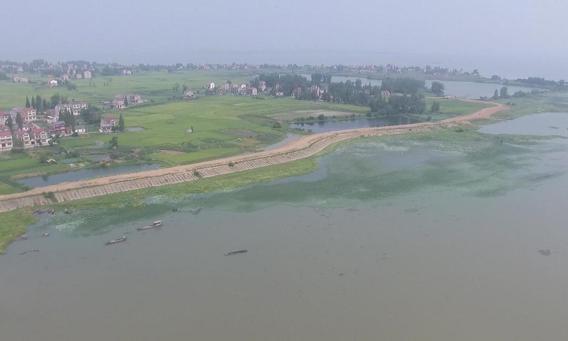 重点提案追踪:治理四湖流域水环境 打造水清岸绿宜居城市