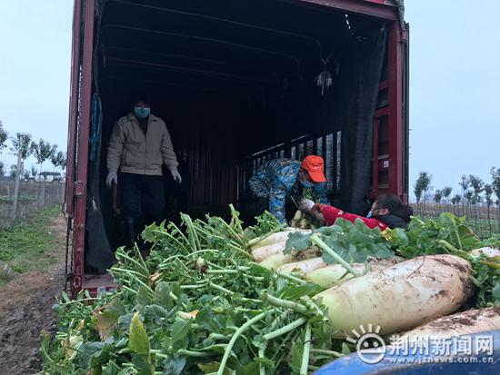 荆州区李埠镇捐赠蔬菜40吨 为抗疫加油!