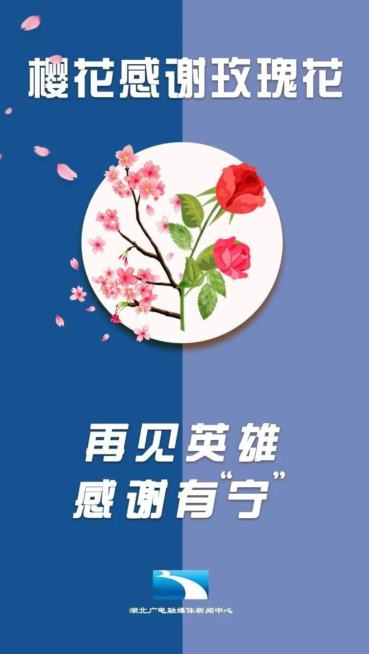樱花感谢玫瑰花、茉莉花、木棉花……援鄂英雄,江湖再见!