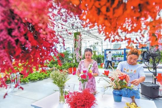 江陵县熊河镇:花卉拓宽致富路 带动乡村产业振兴