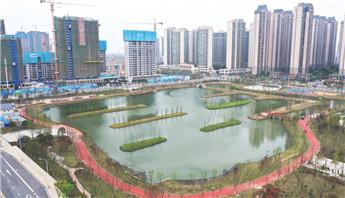 特约记者行:荆北新区湿地公园初现美景